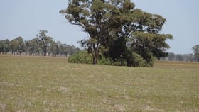 Rural / Farming commercial property for sale at .... Cobb Highway Moama NSW 2731