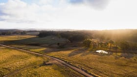 Rural / Farming commercial property for sale at 749 Costellos Road Mount Mitchell NSW 2365