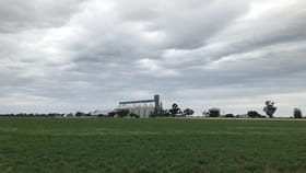 Rural / Farming commercial property for sale at - Birchip-Wycheproof Road Wycheproof VIC 3527