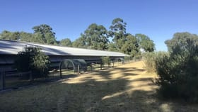 Rural / Farming commercial property for sale at 12 Tunney Rd Oldbury WA 6121