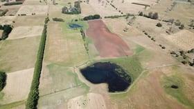 Rural / Farming commercial property for sale at 305 Bengeo Road Dunorlan TAS 7304