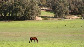 Rural / Farming commercial property for sale at Bakers Hill WA 6562