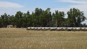 Rural / Farming commercial property for sale at .. Hardings Lane Moama NSW 2731