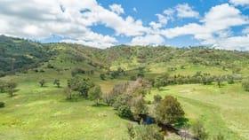 Rural / Farming commercial property for sale at 1155 Bindawalla Rd Bundarra NSW 2359