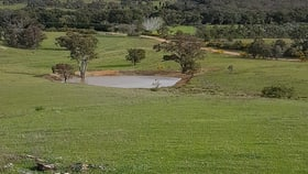 Rural / Farming commercial property sold at 297 Riverlea Road Mudgee NSW 2850