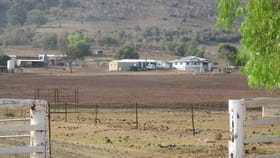 Rural / Farming commercial property for sale at 425 ACRES CATTLE GRAZING Bell QLD 4408