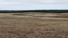 Rural / Farming commercial property for sale at 494 MURNDAL-BRANXHOLME ROAD Branxholme VIC 3302