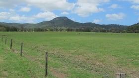 Rural / Farming commercial property for sale at Lot 4 Yandina Bli Bli Road Yandina QLD 4561