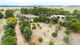Rural / Farming commercial property sold at 621 Coursing Park Rd Downside NSW 2650