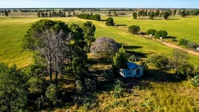 Rural / Farming commercial property for sale at 633 Bonnars Lane Coleambally NSW 2707