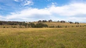 Rural / Farming commercial property for sale at Lot 1 Wyndella Road Lochinvar NSW 2321