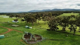 Rural / Farming commercial property for sale at 2935 Chester Pass Road Napier WA 6330