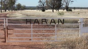 Rural / Farming commercial property for sale at 2623 Hoadleys Road The Gums QLD 4406