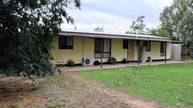 Rural / Farming commercial property for sale at 160 LEETHAM ROAD Deniliquin NSW 2710