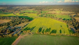 Rural / Farming commercial property for sale at 'Korrawong' 269 Gundy Creek Rd Gilgandra NSW 2827