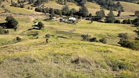 Rural / Farming commercial property for sale at 1011 The Bucketts Way Tugrabakh NSW 2422