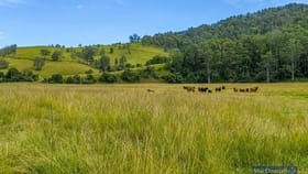 Rural / Farming commercial property for sale at 1762 Five Day Creek Road Comara NSW 2440