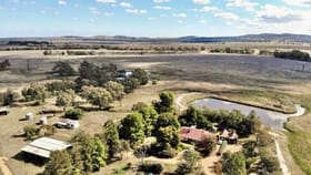 Rural / Farming commercial property for sale at 35 HANCOCK WILLIAMS ROAD Piney Range NSW 2810