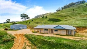 Rural / Farming commercial property for sale at 2000 Pyrenees Highway Elmhurst VIC 3469