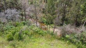 Rural / Farming commercial property for sale at 50 & 61/3239 Armidale Road Blaxlands Creek NSW 2460