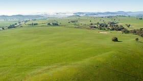 Rural / Farming commercial property sold at 404 Sylvia's Gap Road Tumblong NSW 2729