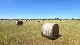 Rural / Farming commercial property for sale at 780 Brewer Road Kyabram South VIC 3620