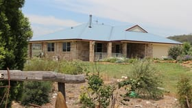 Rural / Farming commercial property for sale at 537 St Helens Road Pittsworth QLD 4356