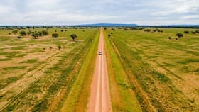 Rural / Farming commercial property for sale at 3297 Roto Road Hillston NSW 2675