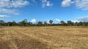 Rural / Farming commercial property for sale at 77-99 Turnbull Road Thagoona QLD 4306