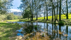 Rural / Farming commercial property for sale at 500 Lower Creek Road Lower Creek NSW 2440