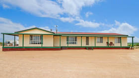 Rural / Farming commercial property for sale at 203 Hastings Road Ceduna SA 5690