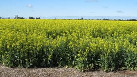 Rural / Farming commercial property for sale at Tocumwal Road Tocumwal NSW 2714