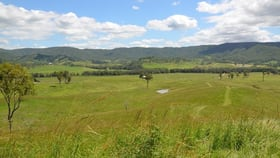 Rural / Farming commercial property for sale at Lot 11 Aherns Road Conondale QLD 4552