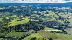 Rural / Farming commercial property for sale at 721 Houghlahans Creek Road Pearces Creek NSW 2477