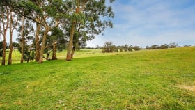 Rural / Farming commercial property for sale at 25 Ringwood Lane Exeter NSW 2579