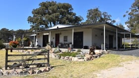 Rural / Farming commercial property for sale at 488 Coopers Road Red Range NSW 2370
