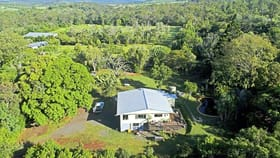 Rural / Farming commercial property for sale at 145 Wards Lane Farnborough QLD 4703