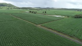 Rural / Farming commercial property for sale at 68 Mezzens Road Sunnyside QLD 4737