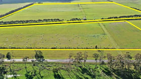 Rural / Farming commercial property for sale at . Princes Highway Boorcan VIC 3265