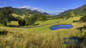 Rural / Farming commercial property for sale at 705 Curricabark Road Gloucester NSW 2422