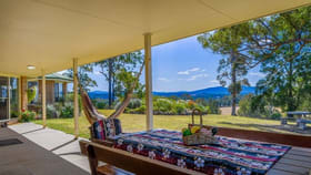 Rural / Farming commercial property for sale at Beechwood NSW 2446