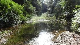 Rural / Farming commercial property for sale at 1413 Kalang Road Kalang NSW 2454