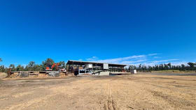 Rural / Farming commercial property for sale at 2902 Old Tenterfield Road Wyan NSW 2469