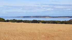 Rural / Farming commercial property for sale at Lot 94 STEVENS ROAD Bay Of Shoals SA 5223