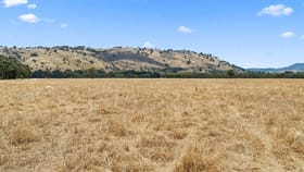 Rural / Farming commercial property for sale at 1 & 2 Neelands Road Euroa VIC 3666
