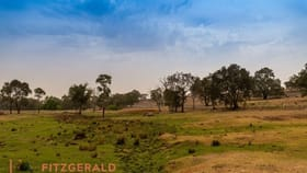 Rural / Farming commercial property for sale at 1179 Peabody  Road Molong NSW 2866