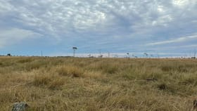 Rural / Farming commercial property for sale at 946 Hummock Road Calavos QLD 4670