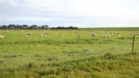 Rural / Farming commercial property for sale at 26 Hewitt Road Appin VIC 3579