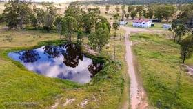 Rural / Farming commercial property for sale at 969 Karara Rd Stonehenge QLD 4357