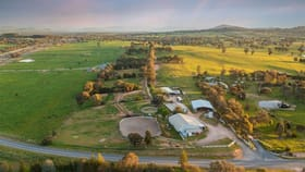 Rural / Farming commercial property for sale at 334 Perrymans Lane Table Top NSW 2640